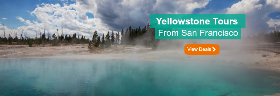 Yellowstone tours from San Francisco