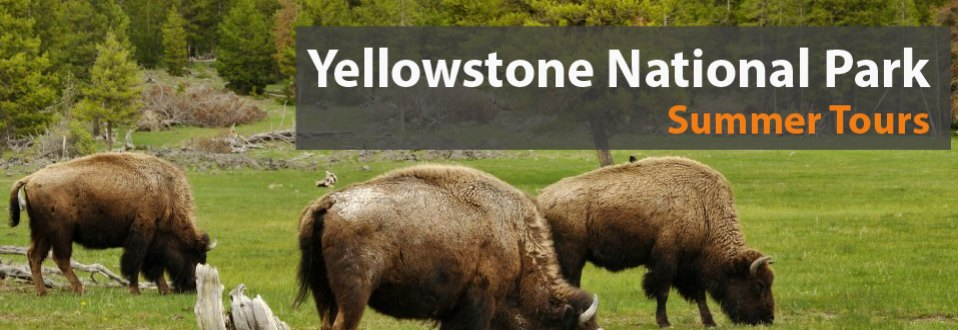 Yellowstone National Park tours and vacation Packages